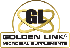 Golden Link Microbial Supplements, Microbial Supplements with Live Probiotics for Bovine, Equine and Companion Animals